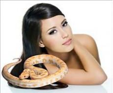 Змеи – ужасные, полезные, незаменимые